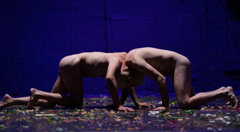 ›Niv Sheinfeld & Oren Laor / Foto Efrat Mazor