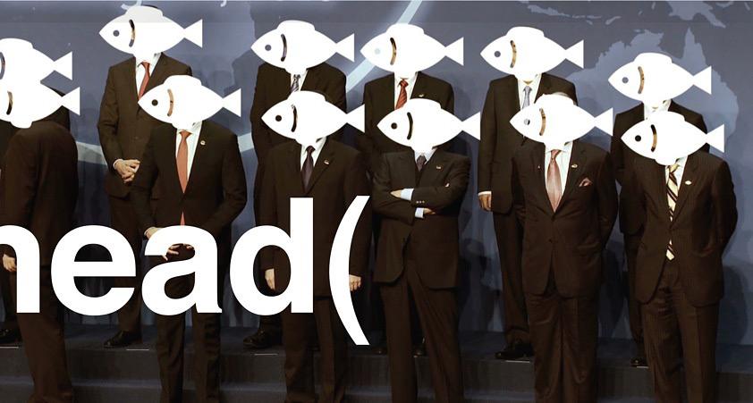 i am not a fish